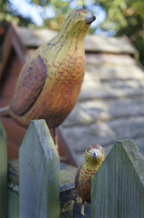 Garden_Style_Ornamental_Wooden_Birds_on_Fence