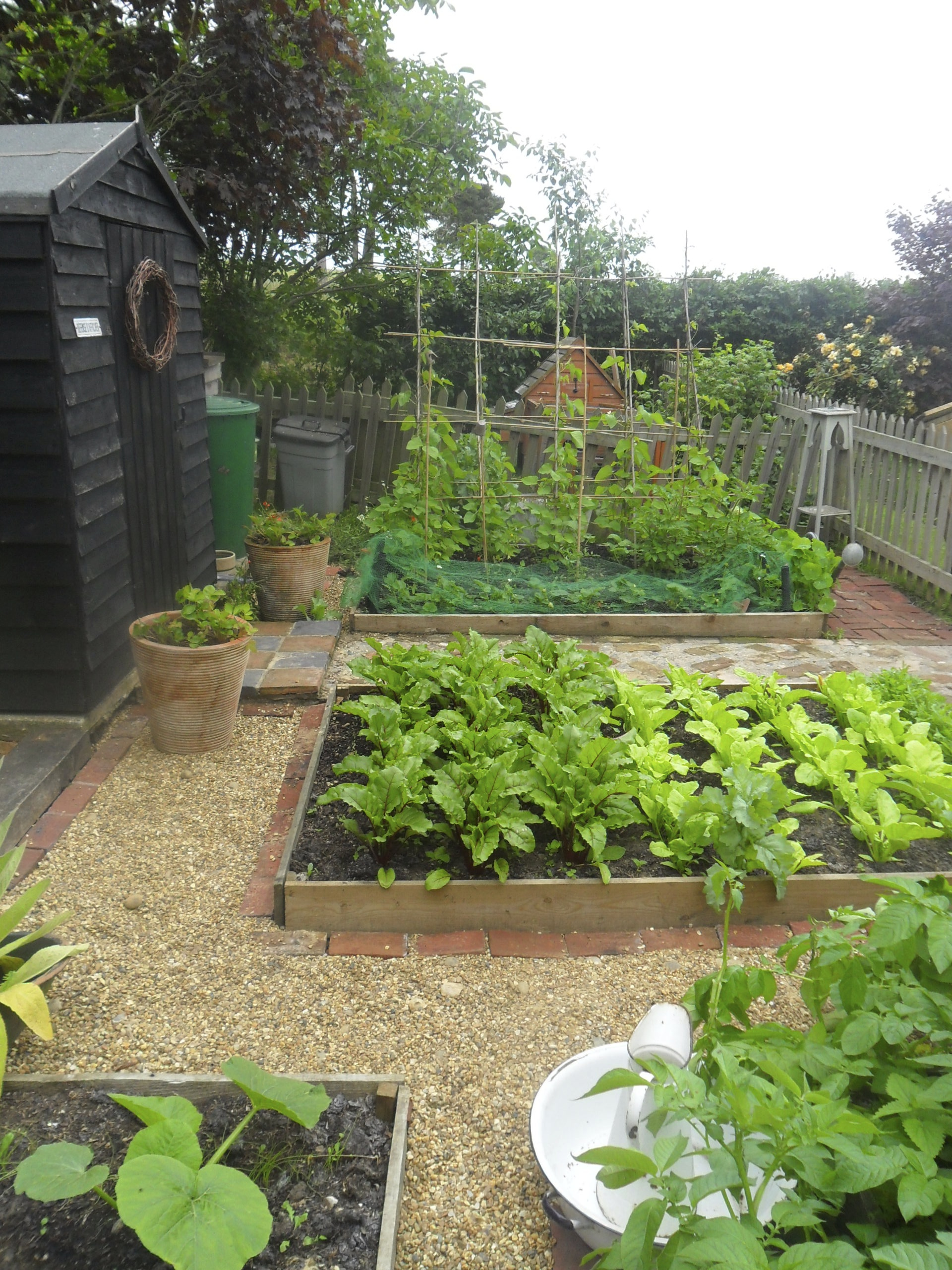 Ornamental Kitchen Garden Love The Border Around Garden Softens Square Plot And Rustic Bean