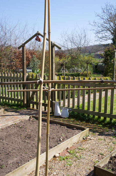 Spring Clean in the Vegetable Patch